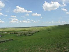 Grasslands of Mongolia
